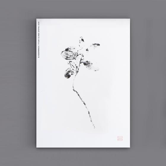 41-cards-flat-plant-m